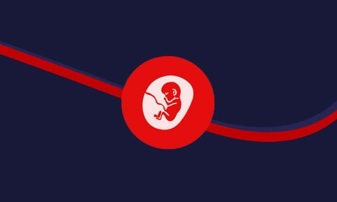बॉम्बे हाईकोर्ट कोख किराए पर देने वाली महिला को उसके बच्चे के होने वाले माँ-बाप की अनुमति से 24 सप्ताह के गर्भ को नष्ट करने की अनुमति दी
