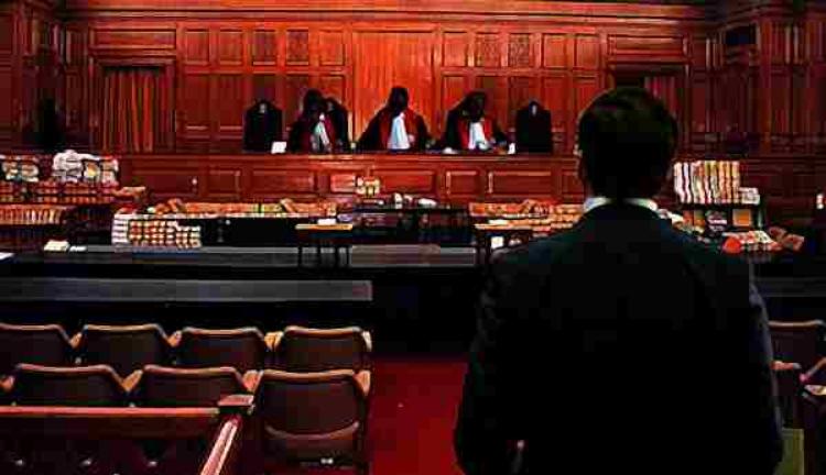 कोर्ट में वकील को क्या खड़े रहकर पैरवी करनी चाहिए? BCI करेगी फैसला, जानिए पूरा मामला
