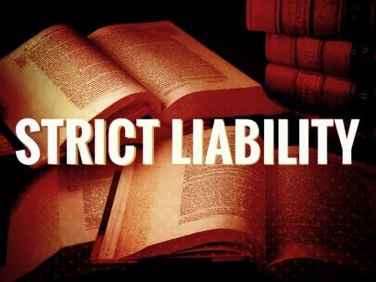 वाईजैग गैस लीकः जानिए कठोर दायित्व (Strict Liability) सिद्धांत के बारे में ख़ास बातें